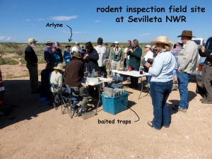 annotated rodent inspection field team at Sevietta-blog